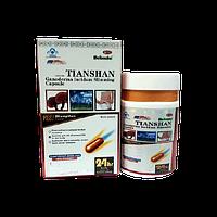 Ганодерма Тяньшанская - препараты для похудения