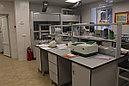 Стол лабораторный физический серии СТ.ССД, фото 6