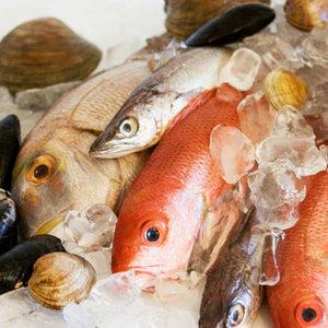 Морепродукты и рыба, общее