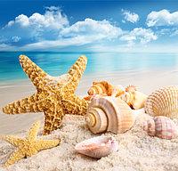 Ноты моря, отдушка