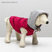 Куртка зимняя, XS (ОШ 18-22,ОГ 27-32,ДС 20 см), красная