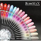 Гель лак BlooMax Shine collection №10, 12 мл, фото 2