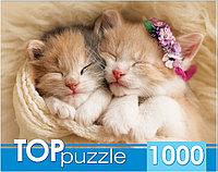 Пазлы Toppuzzle 1000 элементов Ассорти