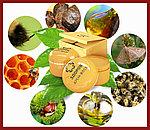 Крем Здоров от дерматита, на основе натуральных продуктов пчелиного производства, фото 6