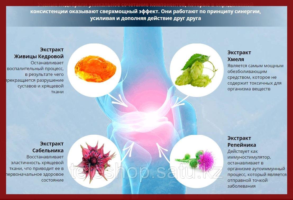 ArtroFast крем от боли в суставах и спине, натуральная формула - фото 8