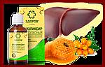 Эликсир ЗДОРОВ для печени, на натуральных продуктах пчеловодства, фото 3
