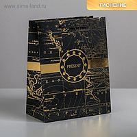 Пакет ламинированный вертикальный Gold present, MS 18 × 23 × 10 см
