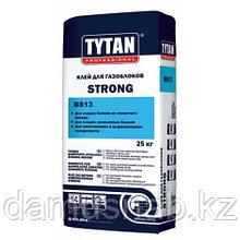 Клей для газоблоков зимний 25 кг TYTAN STRONG BS 13