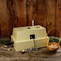 Инкубатор бытовой 'Золушка', на 28 яиц, автоматический переворот, 220 В/12 В
