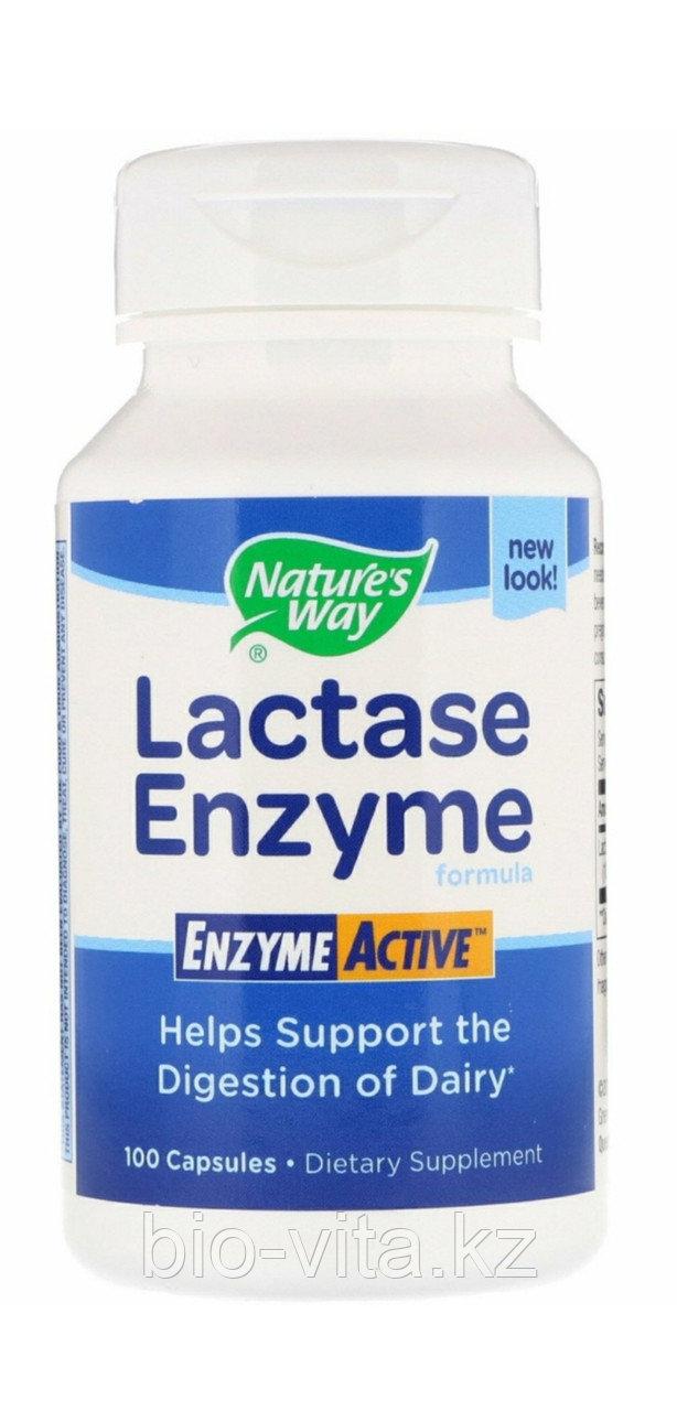 Лактаза энзим. Lactase Enzyme. 100 капсул. Фермент для усвоения молочных продуктов.