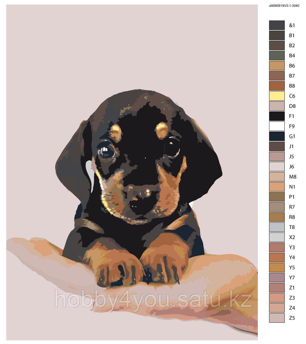 Картина по номерам красками 30х40см