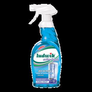 """Средство для мытья душевых кабин активная пена """"Ludwik"""", 750 мл"""