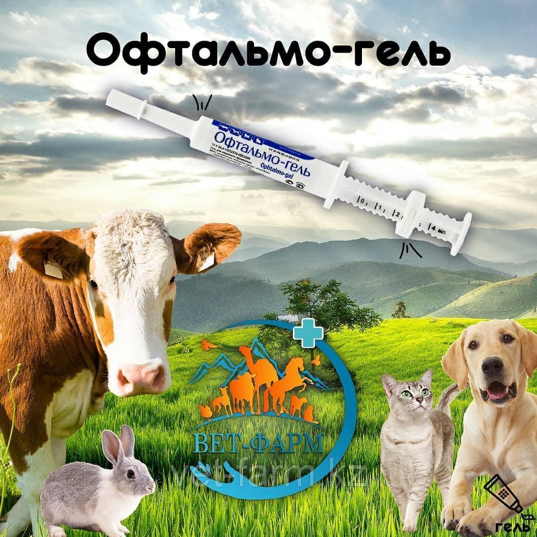 Офтальмо-гель