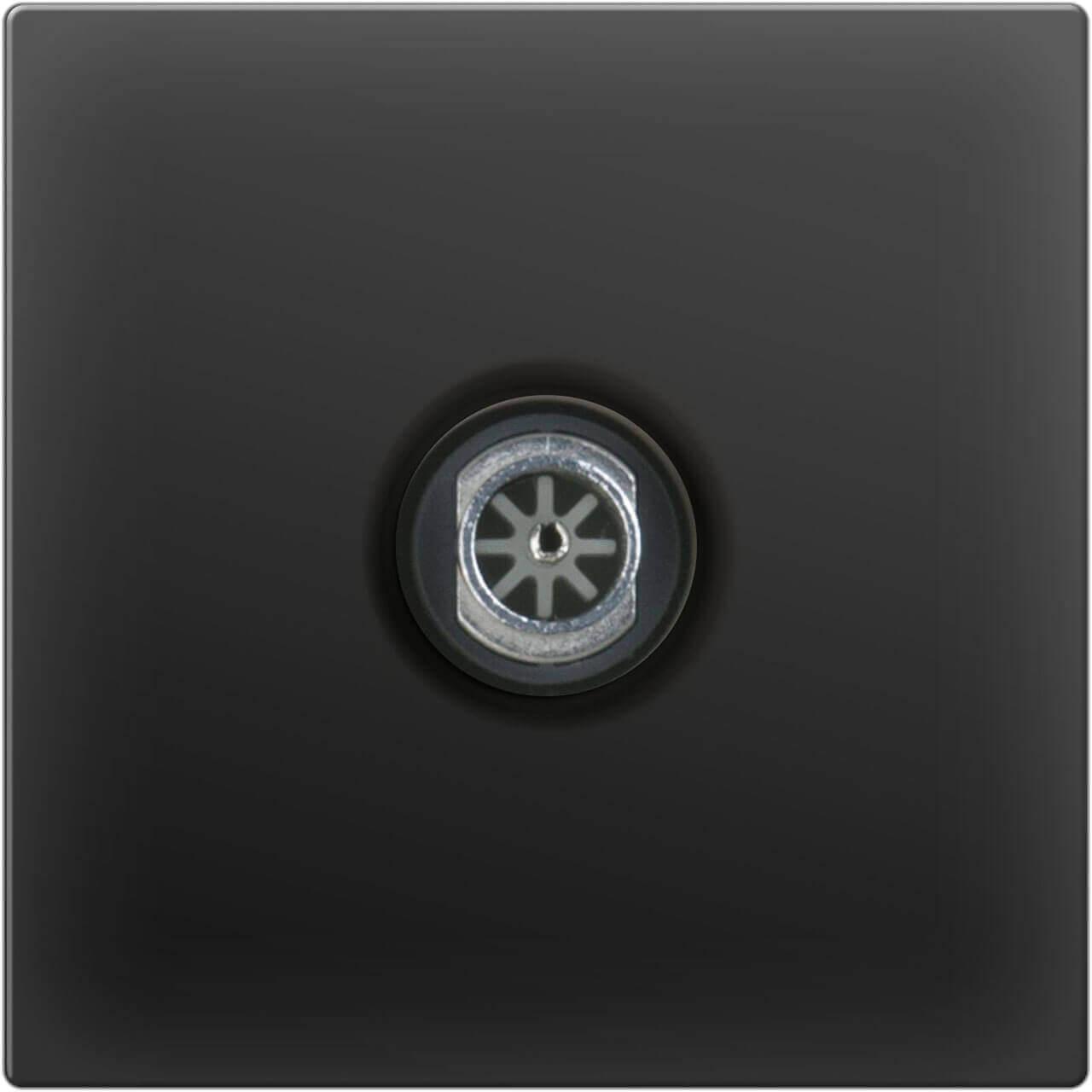 ТВ-розетка Werkel проходная черный матовый WL08-TV-2W 4690389073519