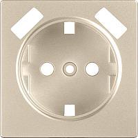 Лицевая панель Werkel розетки USB шампань WL11-USB-CP 4690389124693