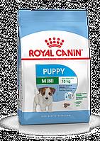 Royal Canin Mini Junior,сухой корм для щенков мелких пород, уп. 8кг