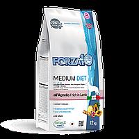 Forza10 Diet Medium,сухой диетический корм для собак средних пород с ягненком,уп.12 кг.