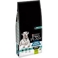 Pro Plan Adult Large Athletic Sensitive Digestion,сухой корм для взрослых собак атлетических пород с