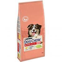 Dog Chow Active,сухой корм для взрослых активных собак,уп.14 кг.