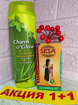 Шампунь Тулси + Масло для волос