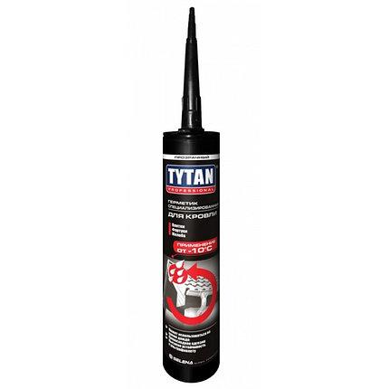 TYTAN герметик специализированный для кровли (310 мл) бесцветный, фото 2
