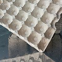 Бумажный яичный лоток от производителя, на 30 яиц 310*310, 295*295, на 10 яиц боксы для супермаркетов.