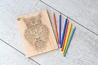 Детская мозаика Сова - средняя (размер A4) с карандашами 6шт. (из кедра)