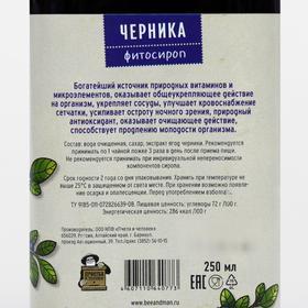 Сироп 'Черника', для зрения, от токсинов, 250 мл - фото 4