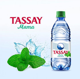 Вода Tassay МЯТА без газа 0,5 л.