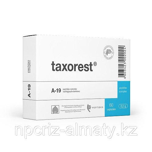 ТАКСОРЕСТ А-19 пептидный биорегулятор слизистой оболочки