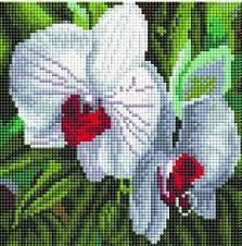 """Картины стразами на подрамнике """"Белые орхидеи"""" 20х20см"""