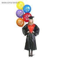 Мантия выпускника, чёрная, красный воротник, академическая шапочка, набор шаров, р. 42-54