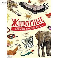 «Большая энциклопедия. Животные»