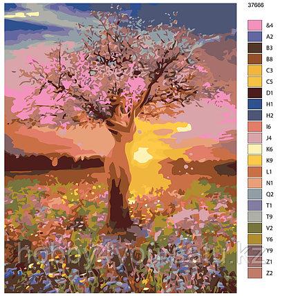 Картина по номерам  40х50 см, фото 2