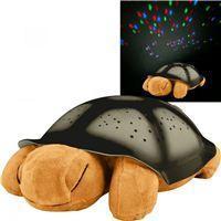 Черепаха планетарий маленькая