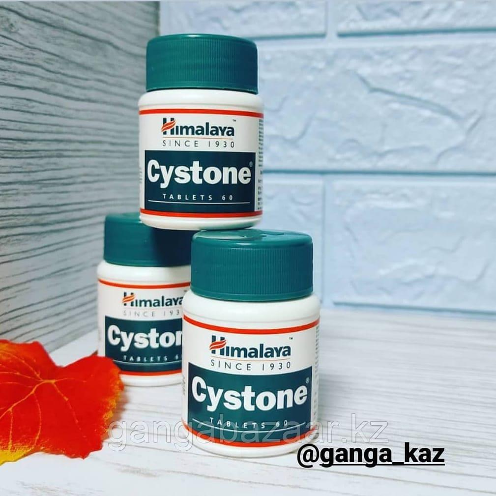 Цистон (Cyston, Himalaya) - для лечения урологических заболеваний, 60 таб