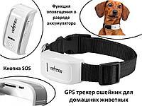 GPS трекер ошейник для домашних животных, TK-STAR TK909, фото 1