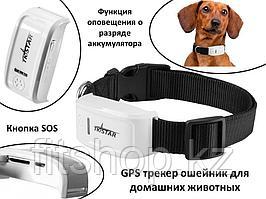 GPS трекер ошейник для домашних животных, TK-STAR TK909