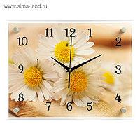 """Часы настенные, серия: Цветы, """"Милые ромашки"""" 30х40 см, микс"""