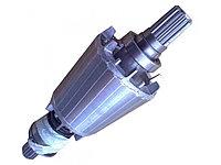 Ротор двигателя тельфера