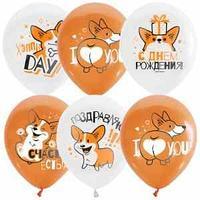 """Воздушные шары, 25шт., М12/30см, ПатиБум """"White&Orange. Корги. С днем рождения"""", декоратор, шелк"""