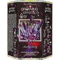 """Набор для проведения опытов """"Growing CRYSTAL Amethyst"""" (8)"""