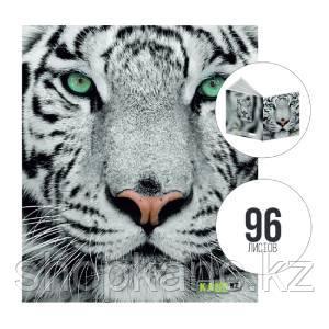 Тетрадь А5, 96 л., клетка, Tiger, KANC.KZ