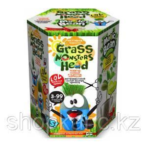 "Набор креативного творчества ""GRASS MONSTERS HEAD Волшебный боб YES"""