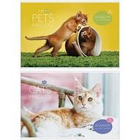 Альбом для рисования, My pets, А4, 8 листов.