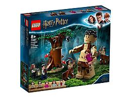 LEGO: Запретный лес: Грохх и Долорес Амбридж Harry Potter 75967