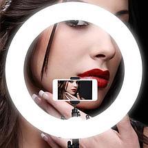 Кольцевая лампа «RING FILL LIGHT» со штативом для блогеров И BEAUTY-мастеров 26см, фото 2