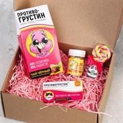 Подарочный набор «Противогрустин»: леденец 15 г, шоколад 27 г, чай с апельсином и шоколадом 100 г, мармелад 50