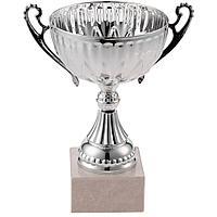 Кубок North King, большой, серебристый, фото 1