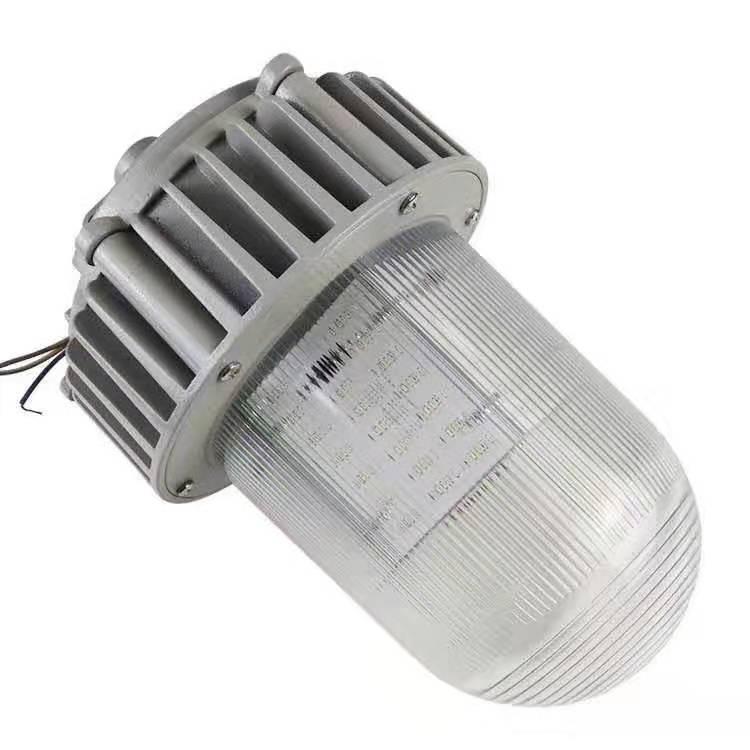 Взрывозащищенный подвесной светильник DL-Y 100W